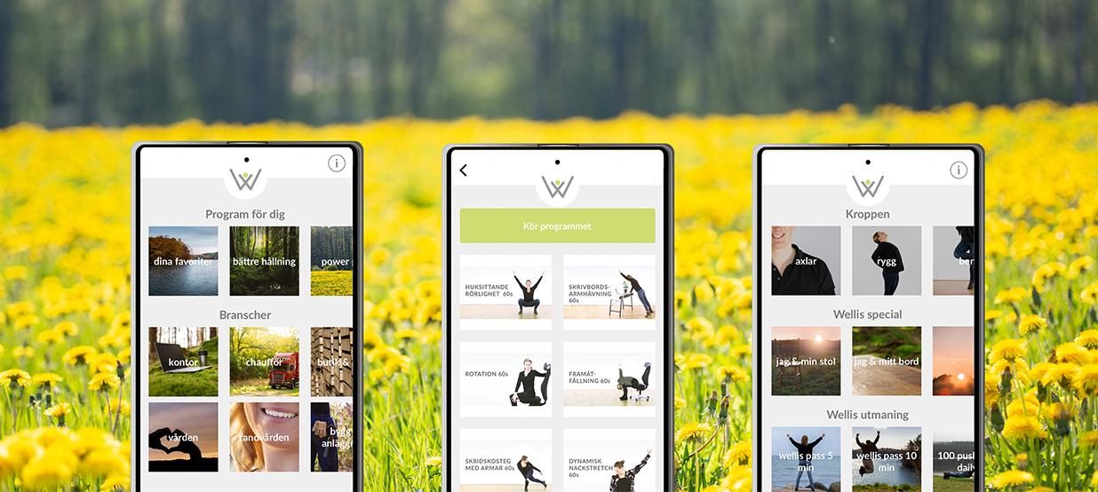 Onlineträning friskvård app